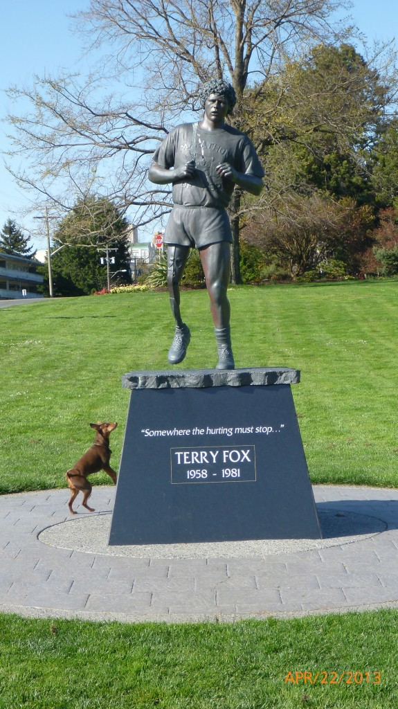 Dash looking up to Terry Fox statue