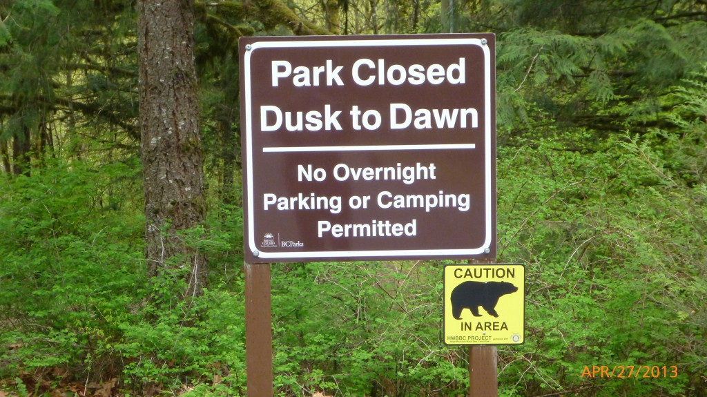 Bear signs are becoming more common