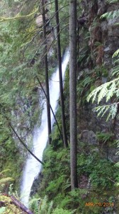 Waterfall in Lynn Canyon Suspension Bridge Park