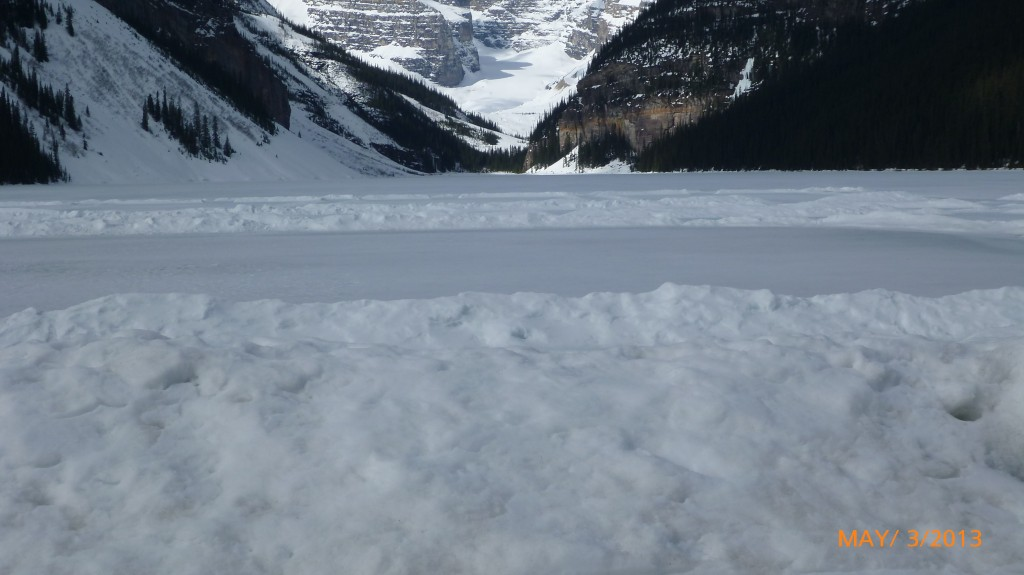 A skating rink on Lake Louise (I think the ice was too thin to skate on)