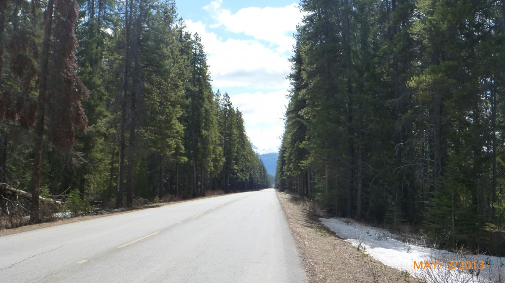 A look down the bow valley parkway
