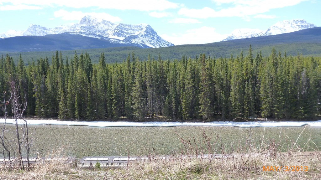 One of the many views from the pull off sections on the bow valley parkway