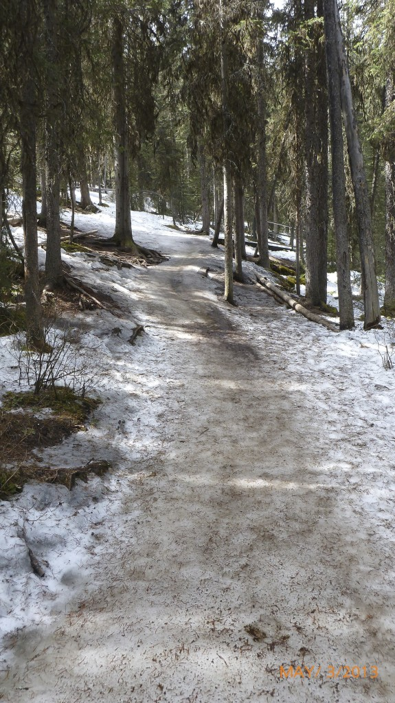 Slick snow packed trail