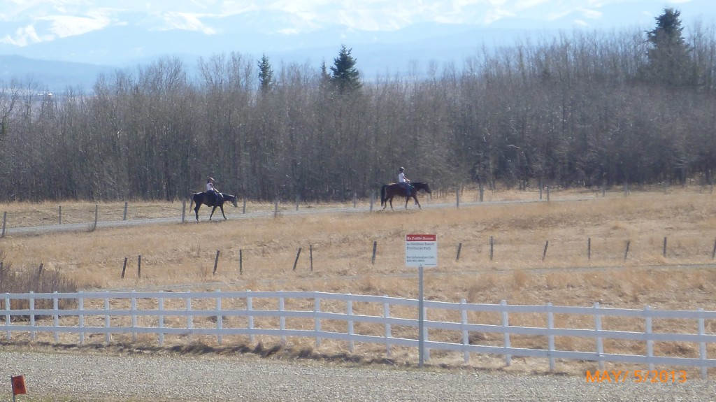 I thought I would see more horses along the way - maybe through the prairies?