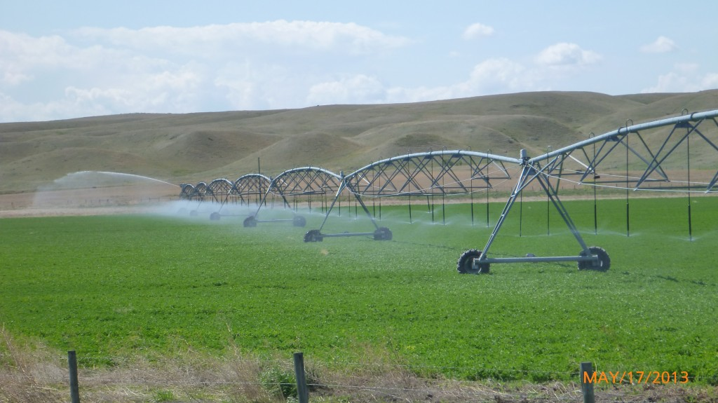 Farm watering system