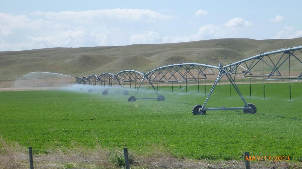Farm watering system