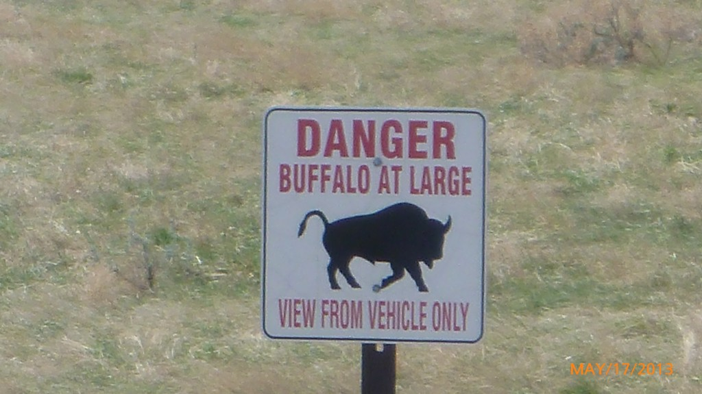 I didn't see any buffalo, so thought I would at least take a pic of the sign!