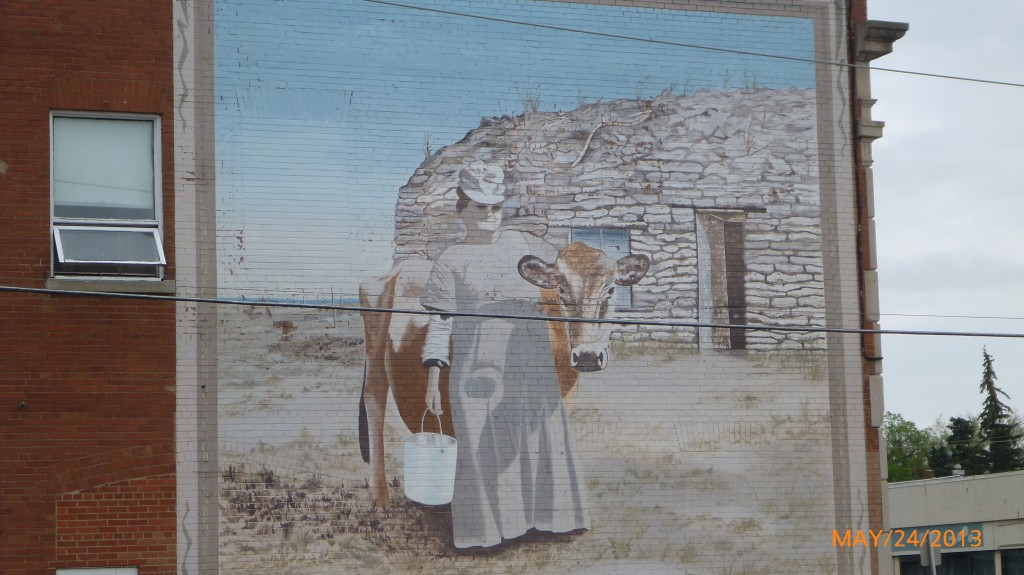 For pioneer women on the prairies a cow was a prized possession.  The lady is Mrs. Elizabeth Elliot.
