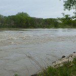 Assiniboine River - was moving pretty fast