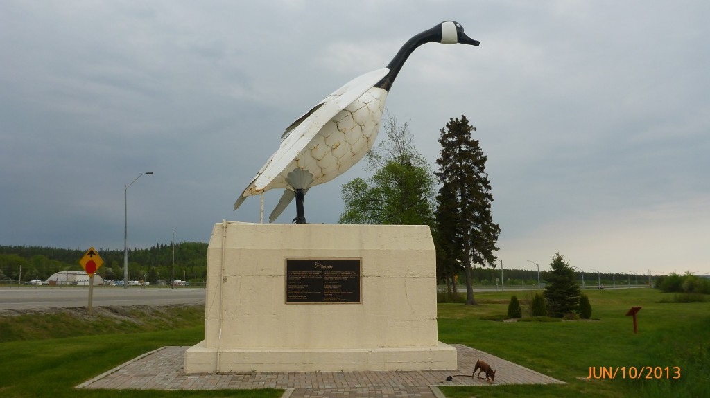 Wawa is ojibwa for 'wild goose' - they have a few goose statues in Wawa