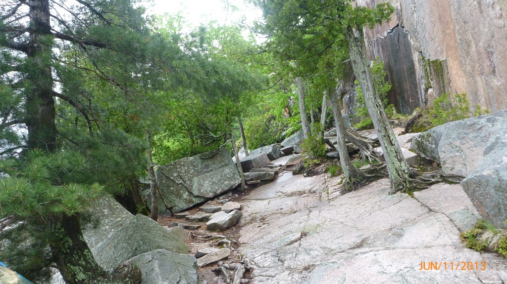 Here's the part of the trail that I slipped - the camera is straight, the trees and rocks are slanted...