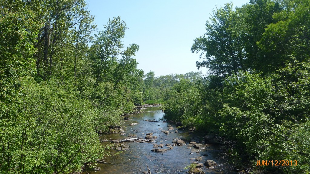 Creek on Whitefish Island in Sault Ste. Marie
