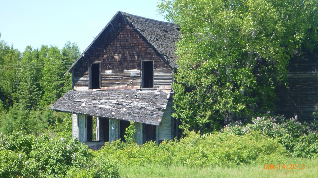 An abandoned house along hwy 17