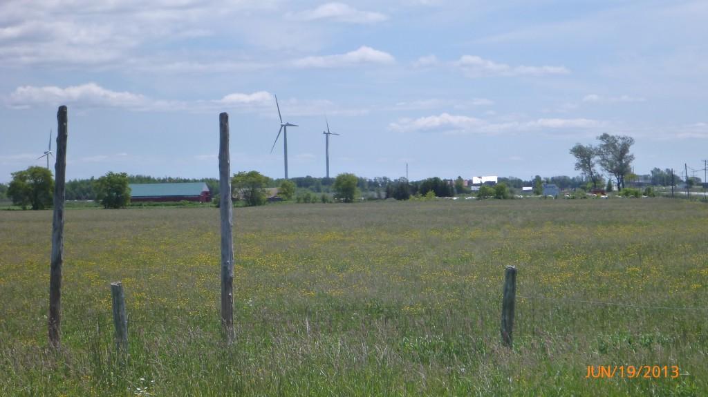 Windmills near Ferndale