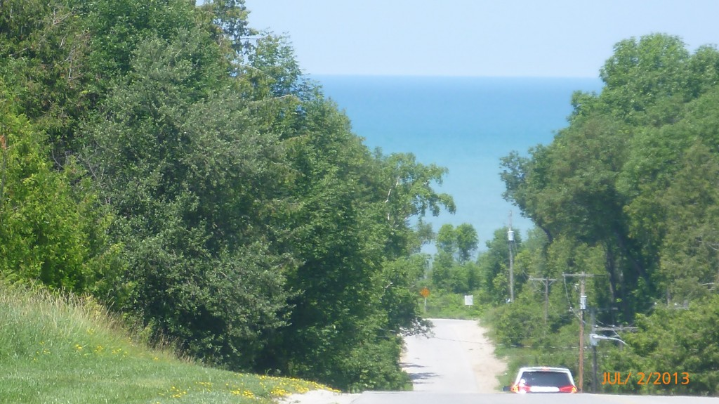 View of Lake Huron between the trees