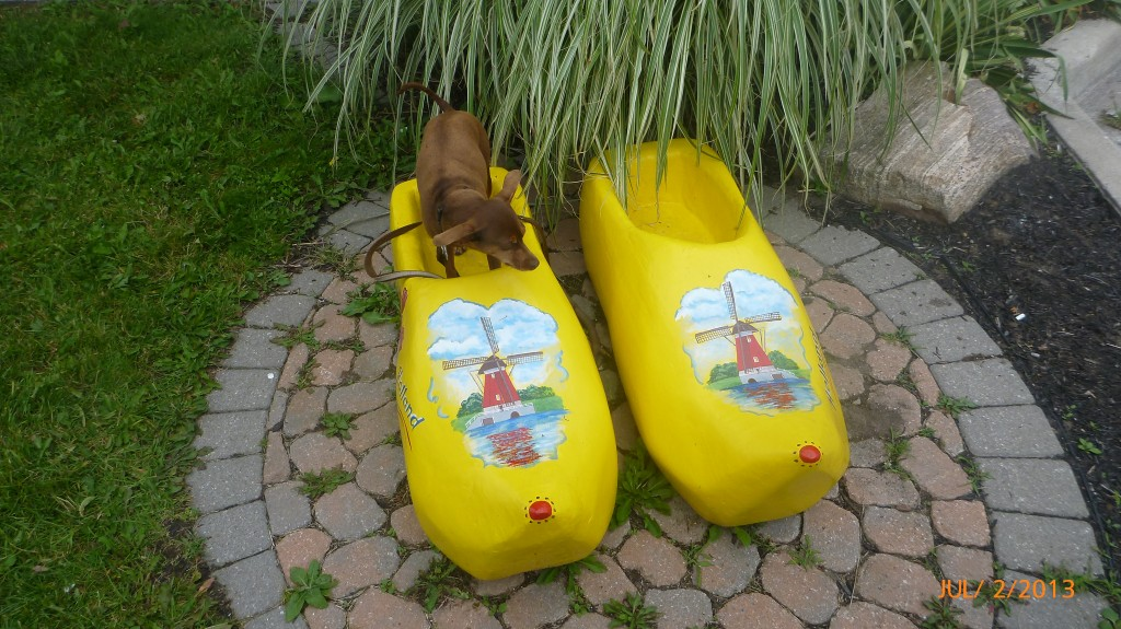 Anybody missing their clogs?