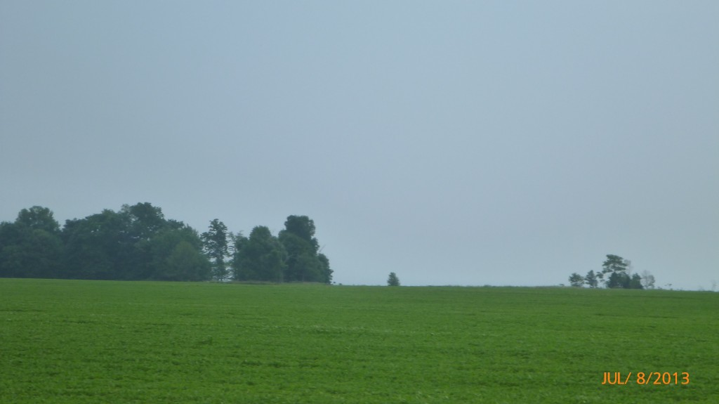 This has been my view of Lake Erie for most of the day  - the land drops at the edge of the trees down to the lake