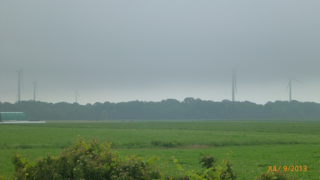 The windmills through the glorious, glorious mist!