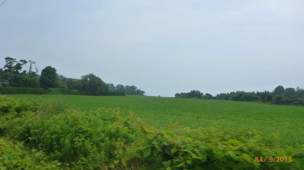 Another view of Lake Erie (the treeline is where the land drops down to the lake)