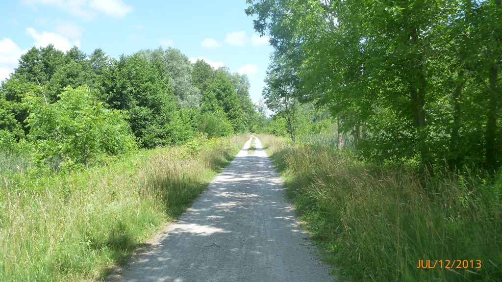 Part of the Grand River Rail Trail just south of Cambridge