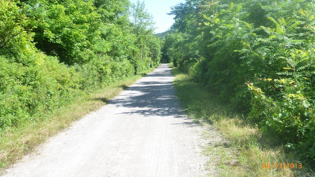 On the rail trail for a couple km's just outside of Hamilton