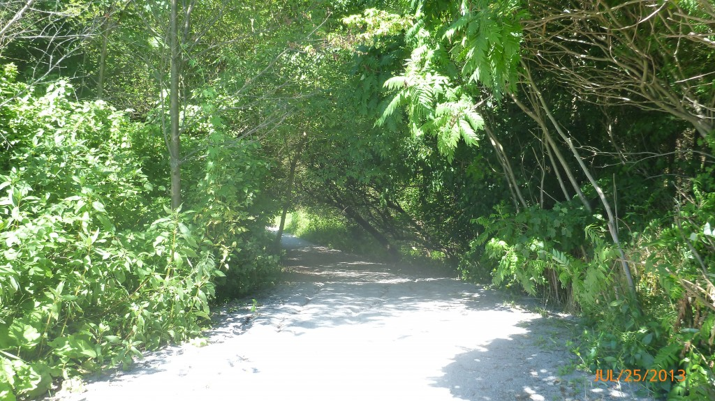 The waterfront trail