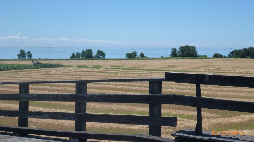 Farm land west of Port Hope