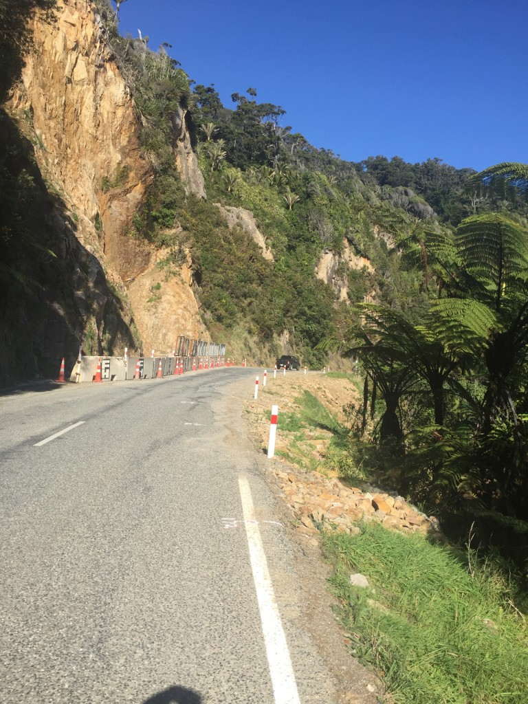A small rockslide had the road down to one lane in this area