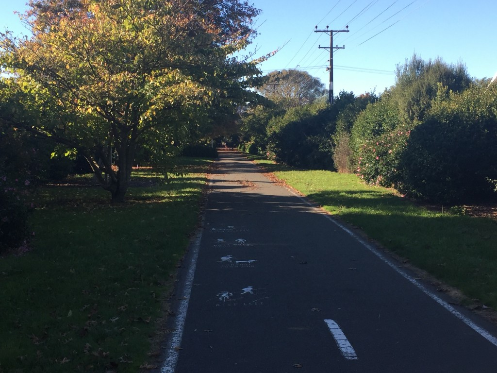 Converted railway trail that takes you into Nelson city centre