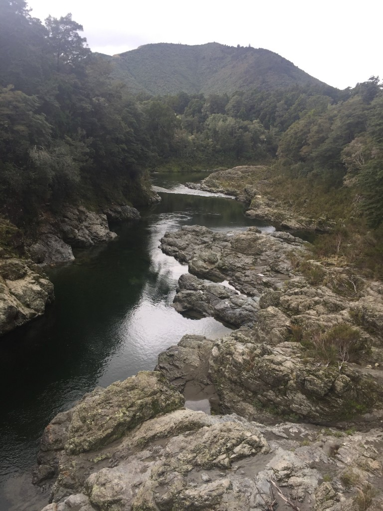 Pelorus Bridge - a scene from the Hobbit was filmed here, do you recognize it? Hint, it involves barrels floating down the river