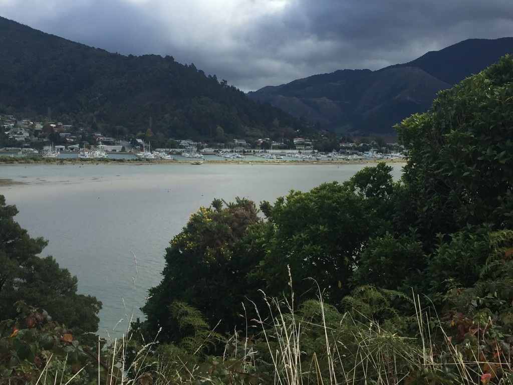 A view of Havelock from the peacefully quiet road of Queen Charlotte Drive
