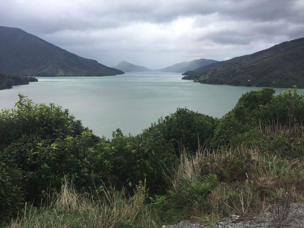 Another view overlooking Marlborough Sounds