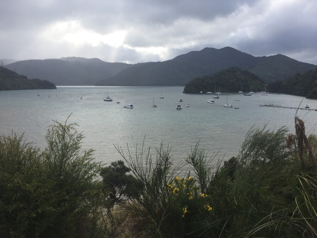 Views along Queen Charlotte Drive