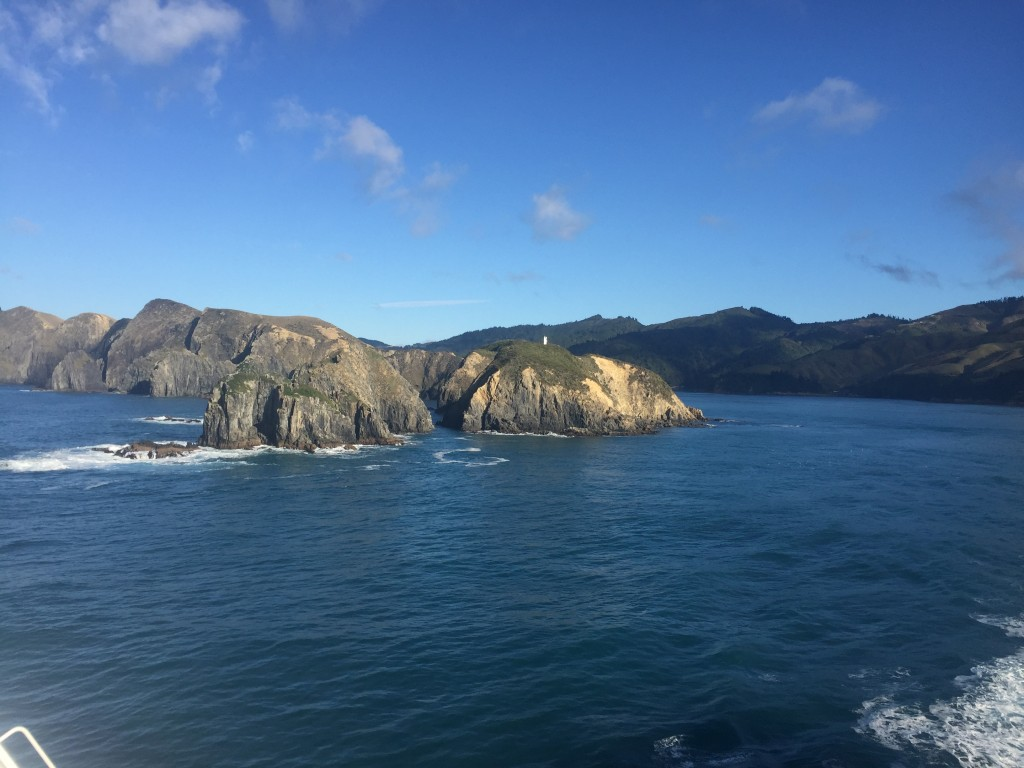 Say g'bye to South Island