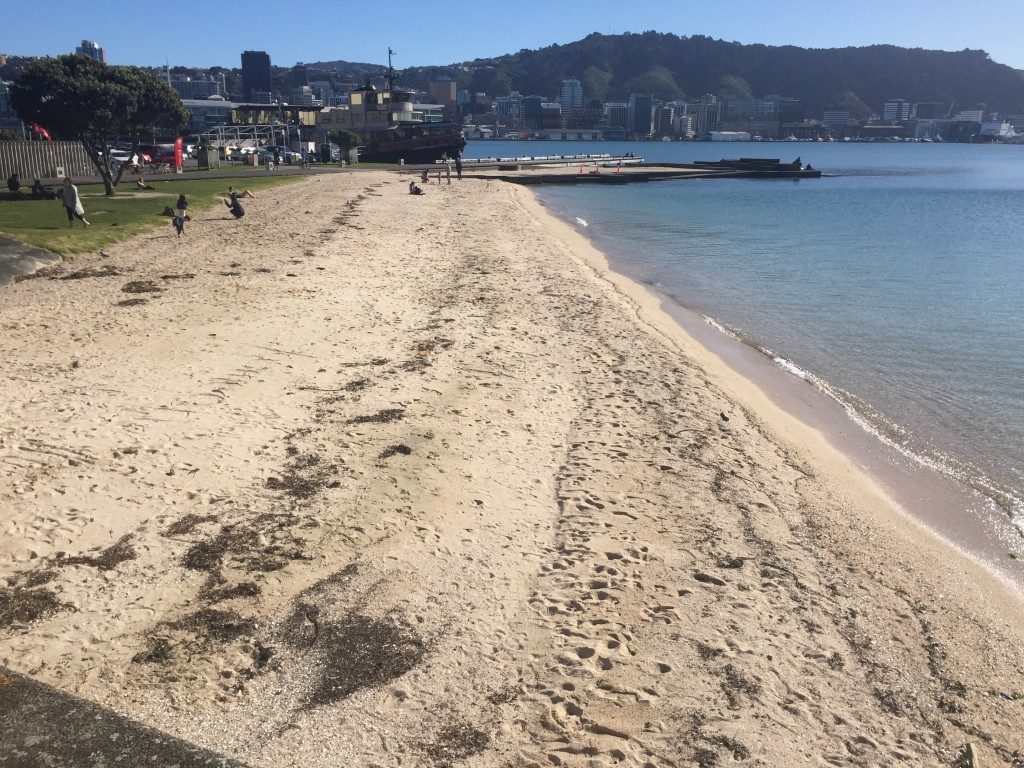 A beach in Wellington
