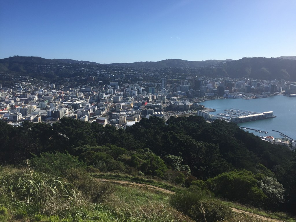View of Wellington from Mount Victoria Lookout
