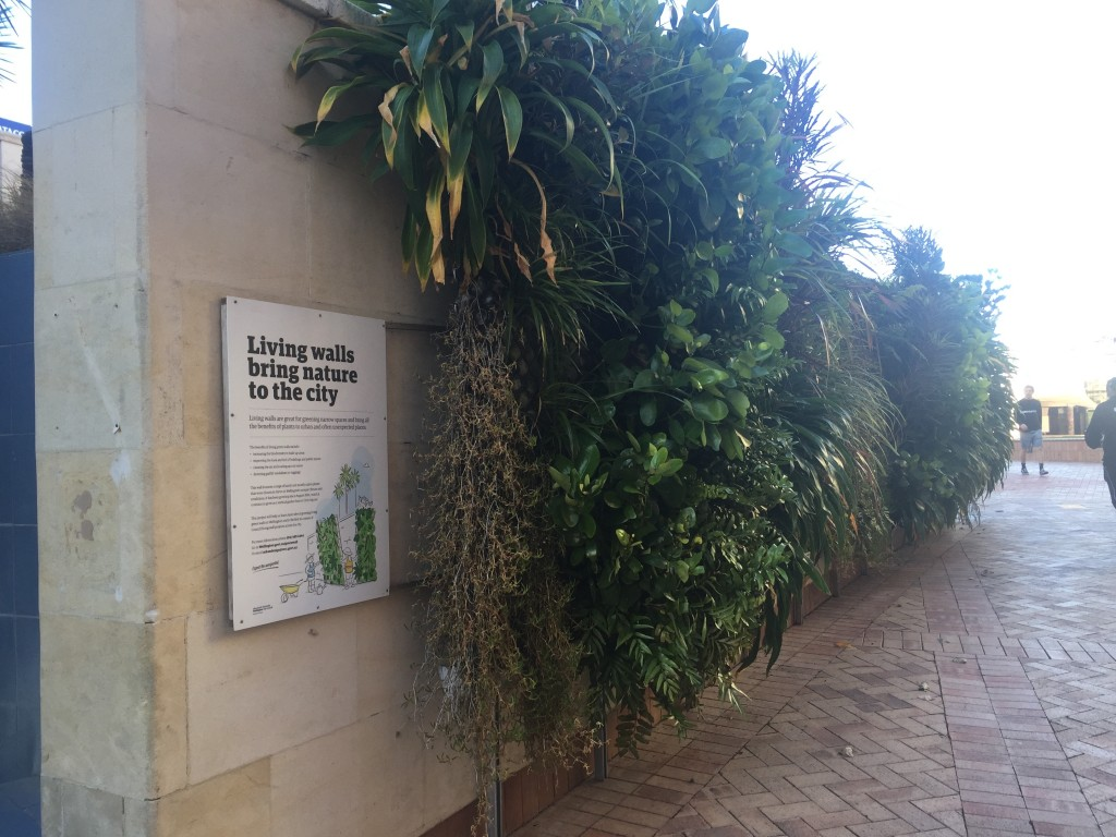An interesting way of bringing more green into the city
