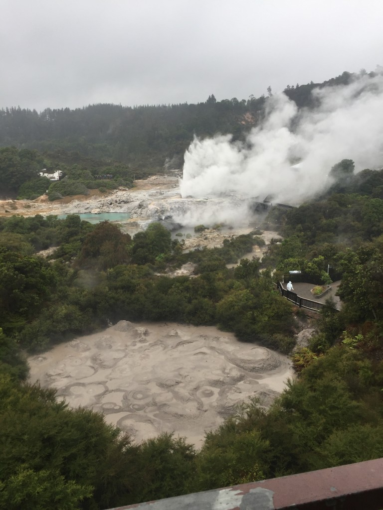 Room overlooking Te Puia - the geyser constantly had steam coming out of it and the mud pool was always bubbling