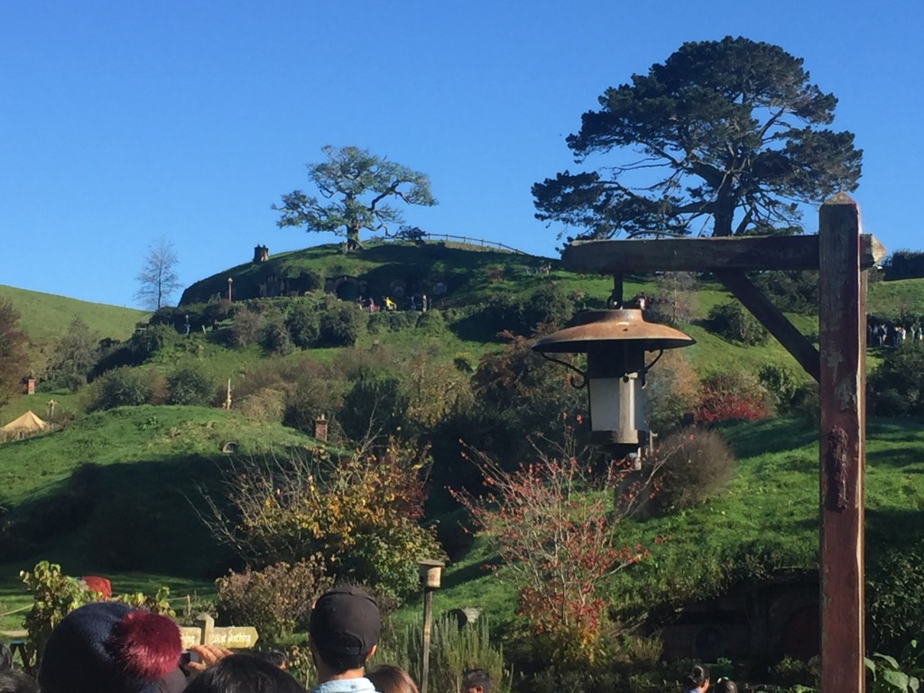 Hobbiton - can you spot the 40 hobbit holes embedded in the hill?