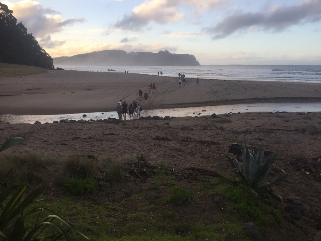 Following the masses to the hot water beach area