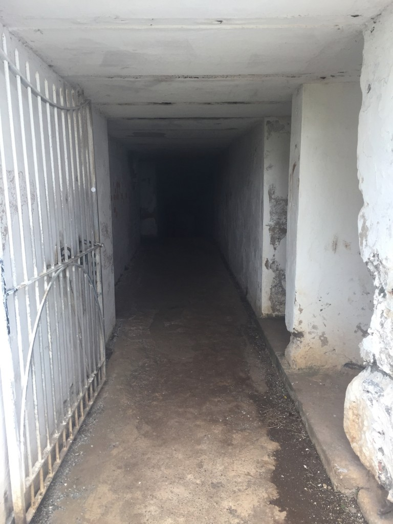 Inside a tunnel - some areas you actually need a light to see in front of you