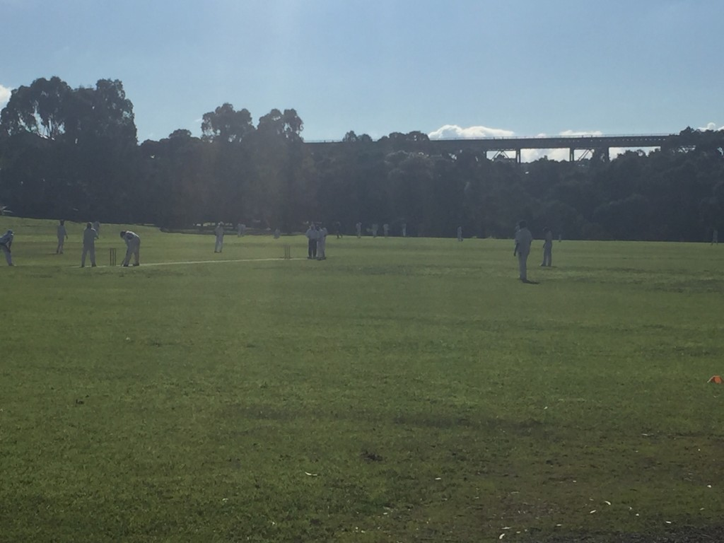 An afternoon cricket game