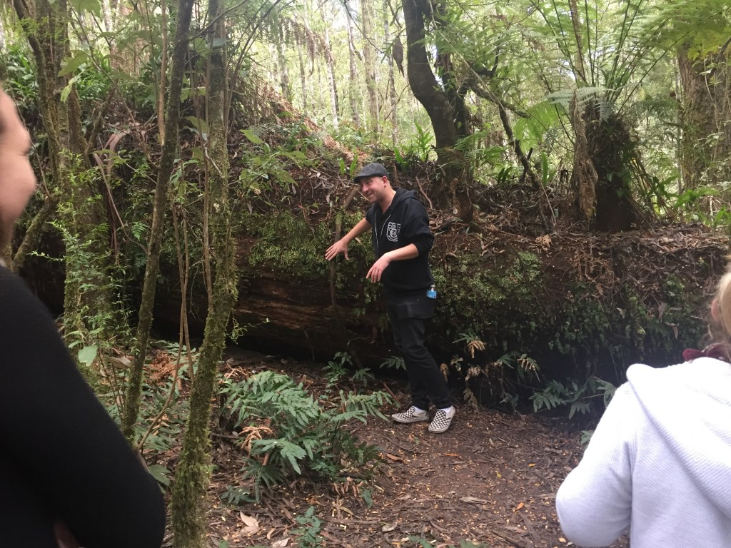 Our tour guide Duan explaining some info about the fallen tree behind him (a Mountain Ash)