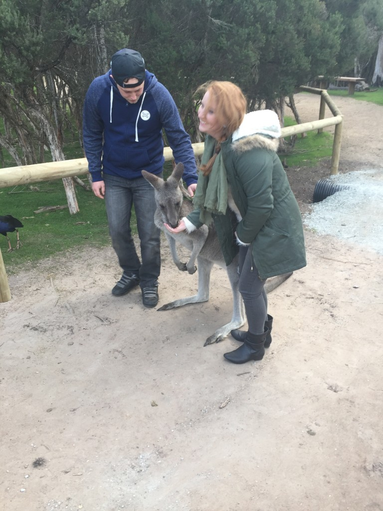 The same kangaroo with a couple peeps from my tour group