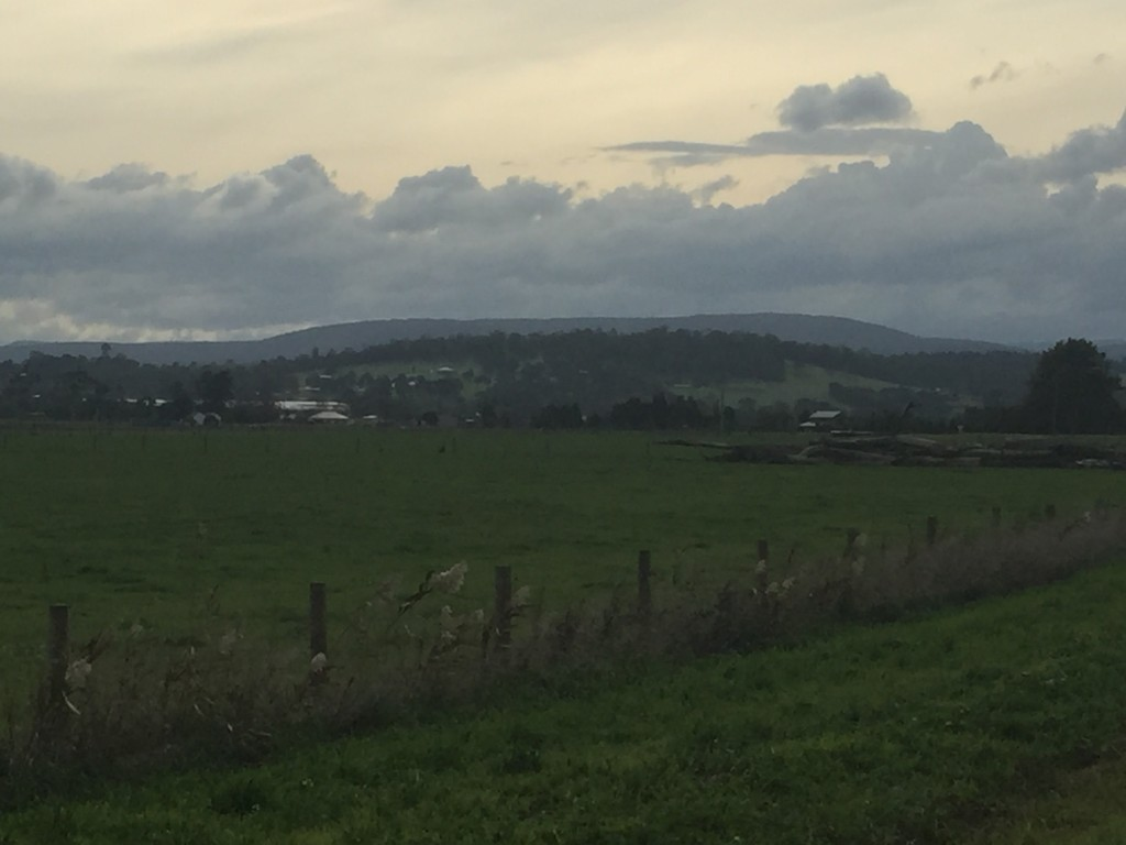 Today's scenery - farm land with hills in the distance