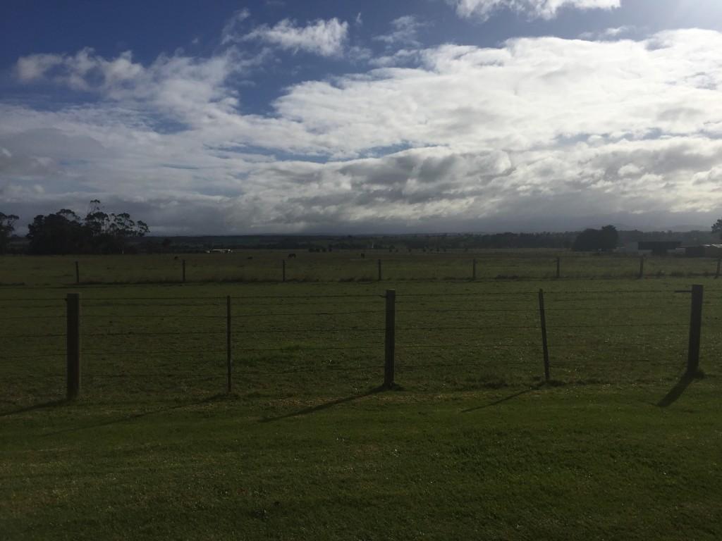 Today's farmland views