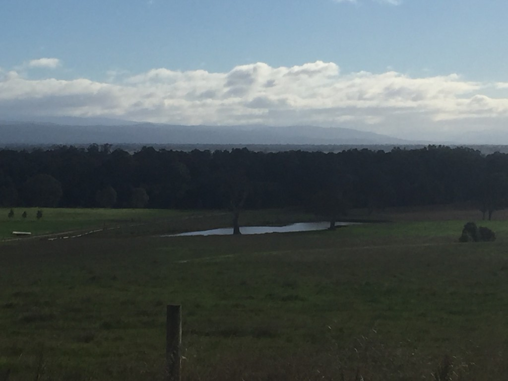 Typical view today - flat land with faint indication of hills in the background