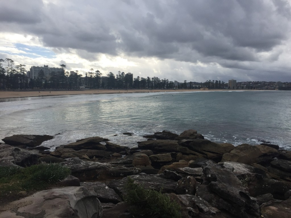 A view of Manly Beach and the pine trees along the shore