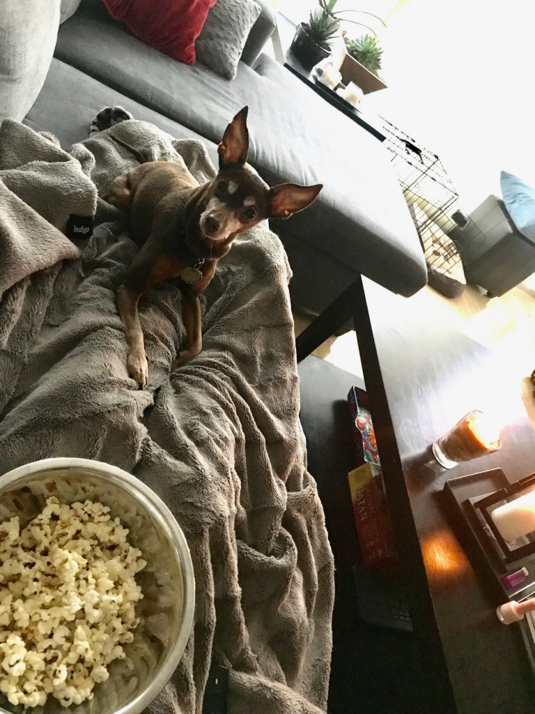Eyeing up some popcorn