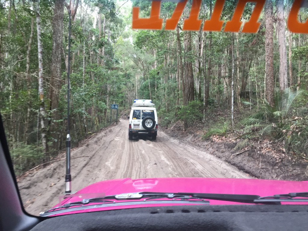 A track on Fraser Island